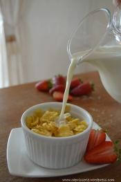 cornflakes 2